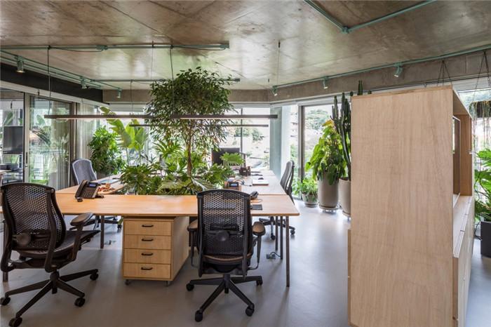 绿植超多的环保办公室装修实景图